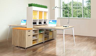 Корпусная мебель Delta